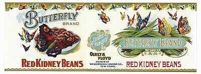 ORIGINAL BUTTERFLY TIN CAN LABEL C1910 ONEIDA BOSTON SQUASH VINTAGE NEW YORK