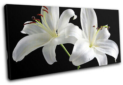 White Flowers Contemporary Modern Floral SINGLE CANVAS WALL ART Picture Print