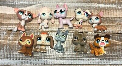 Lot 10 Littlest Pet Shop LPS Dogs Poodle Corgi Great Dane Bulldog