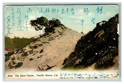 Vintage View of The Sand Dunes, Pacific Grove CA Postcard A7