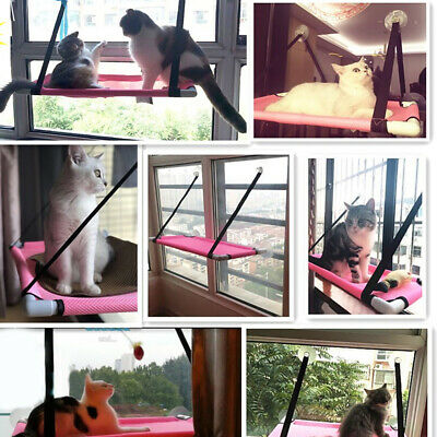 Cat Hammock Basking Window Bed Hanging Shelf Resting Seat Mounted Perch Cushion