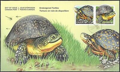 2019   Canada  OFDC     ENDANGERED TURTLES      Brand New 2019  Listing Cover