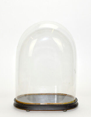 Antique Large Oval Glass Dome with Base for French German or American Clock