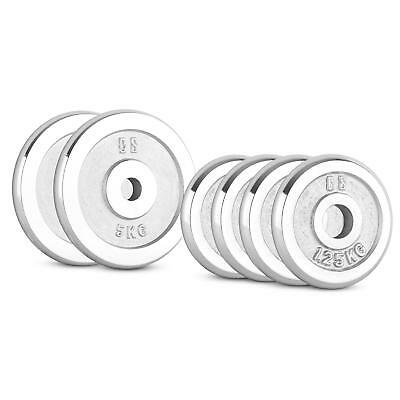 CAPITAL SPORTS CP 15kg Set disques haltères 4x 1,25kg 2x 5kg Ø 30mm - argenté