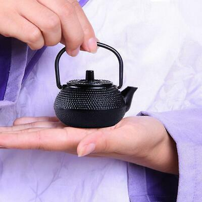 Japanese Style Cast Iron Small Kettle Tetsubin Teapot with Strainer Tea Pot 50ml