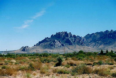 New Mexico Land For Sale in Luna County (Deming)  Buy a Place You Can Afford!!!