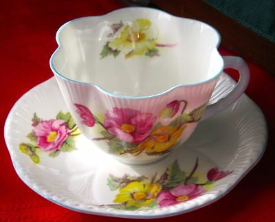 Shelley Fancy BEGONIA Fine Bone China HEXAFOIL SHAPE Cup & Saucer