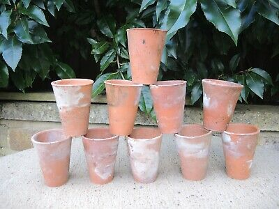 """10 Old  Hand Thrown Terracotta Plant Pots 2.25"""" Seedling Pots Long Toms  (300f)"""