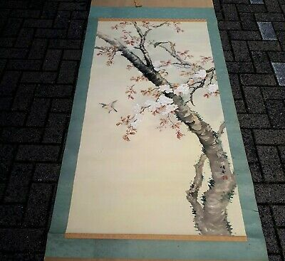 Japanese Hand Painted Scroll~ Meiji Period~ Birds & Cherry Blossoms ~ Signed