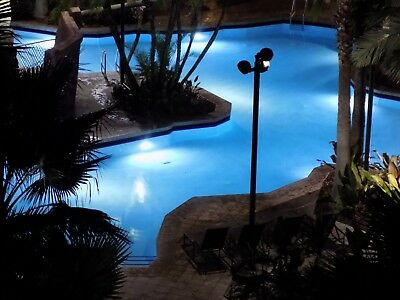 4 Bdrm Presidential Res * 8/17 To 8/19 * 2 Nights * August 17 * Bonnet Creek *