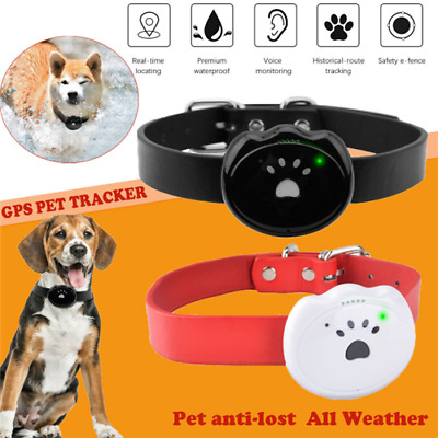 Pet GPS Tracker Cat Dog Anti-Lost APP Online Real Time Tracking Locator Necklace