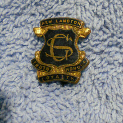 #D497. New Lambton  School Enamel   Lapel  Badge