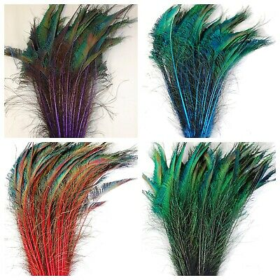 """Dyed Feather PEACOCK SWORDS 10-25"""" In Many Colors; Costume/Hats/Halloween"""