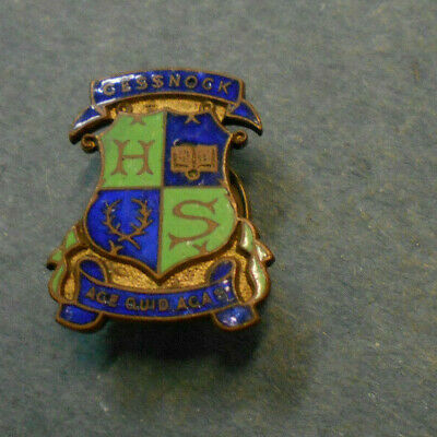 #D247.  Cessnock High  School  Enamel  Lapel  Badge
