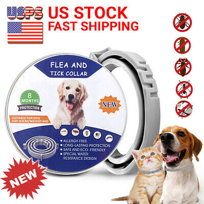 Flea and Tick Collar for Large Dog Over 18lbs 8 Month Protection DEWEL