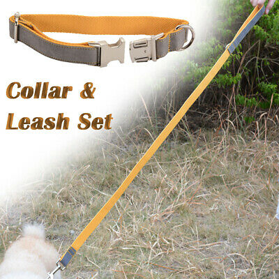 Combo Collar Dog Leash Lead Polyester Strong Training M Size Harness Clip PS224