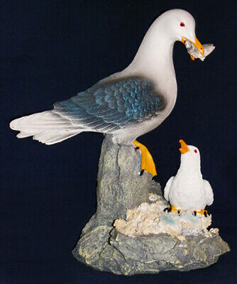 Seagull Mother Feeding Baby With Fish On Rock Base