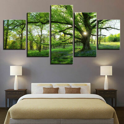 Green Forest Trees Nature Landscapet Sunshine Canvas Prints Painting Wall Art 5P