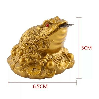 Feng Shui Toad Money LUCKY Fortune Wealth Chinese Golden Frog Toad Coin