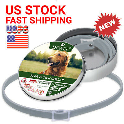 Flea and Tick Collar For Small Dog 8 Months Protection 18lbs Free Shipping DEWEL