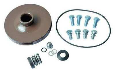 DAYTON 21TH19 Pump Repair Kit,For 2ZXJ5,2ZXJ6