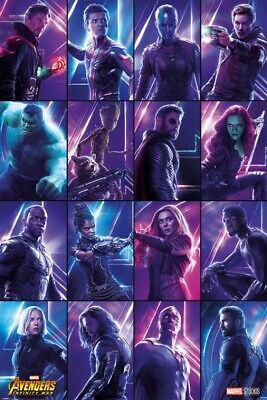 Avengers - Infinity War, Heroes Poster Affiche (91x61cm) #116213