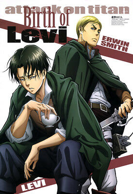 LARGE RARE Attack on Titan Levi, Erwin Poster