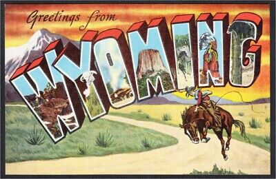 Wyoming Large Letter Linen Postcard Cowboy on Bucking Bronco c.1940s by Kropp