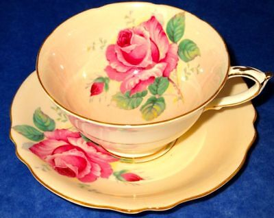 Paragon Lovely Peach Color Humongous Rose Fine Bone China Cup & Saucer 1950s