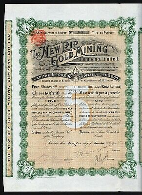 1902 South Africa: The New Rip Gold Mining Company