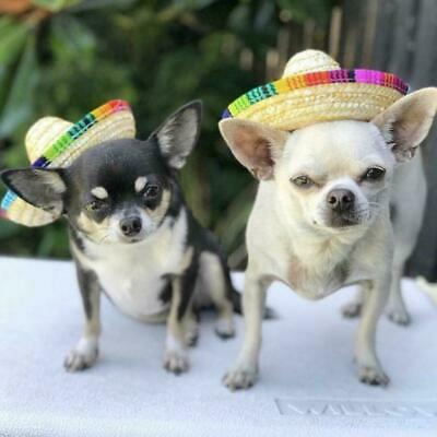 Pet Dog Sombrero Hat Sun Hat Party Hats Dogs and Cats Dog Costume Hot Funny D7R4