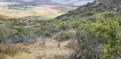Los Angeles County - City of Acton. Residential / Ranch 9.11 Acres lot bargain!