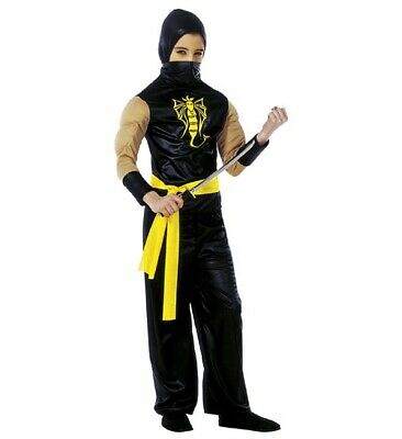 Power Ninja Faschingsköstüm Childrens Fancy Dress Boys, Size 140 cm, 8-10 Years