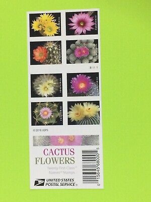 US Cactus Flowers Stamps, a Booklet (20 Forever Stamps), 2019