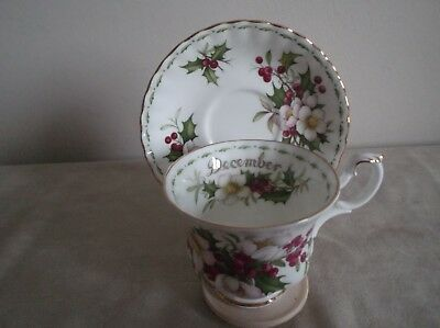 Royal Albert ~ Flower Of The Month Series ~ Dec~ Xmas Rose ~ Cup & Saucer