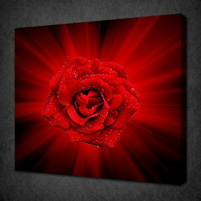 Red Rose Flower Abstract Rays Modern Canvas Wall Art Picture Print Ready To Hang