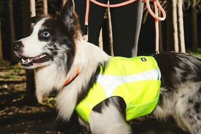 Hurtta Polar Dog Vest High Visibility Waterproof Soft & Warm Pet Vest  Xxs-Xxl