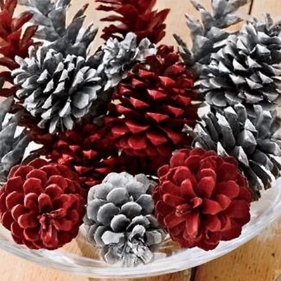 15 RED&WHITE PREMIUM PONDEROSA PINE CONES - Great for Wreaths & Holiday Decor