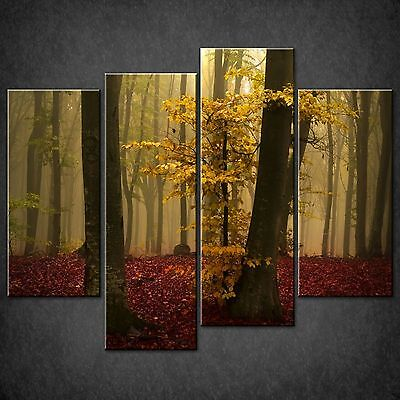 Autumn Yellow Tree Red Leaves Forest Cascade Canvas Wall Art Print Ready To Hang