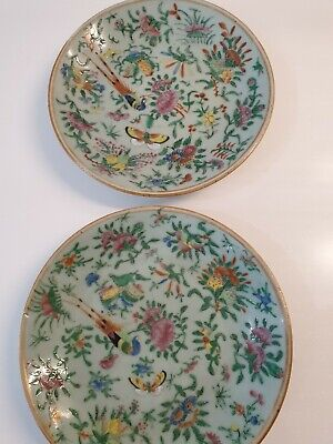 PAIR antique 19th C Chinese Celadon Canton Green Famille Rose Plates large