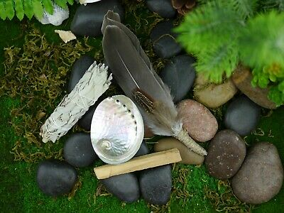 Smudging Kit  Feather Wand ( Abalone Shell 8cm ) White Sage, Palo Santo Smudge