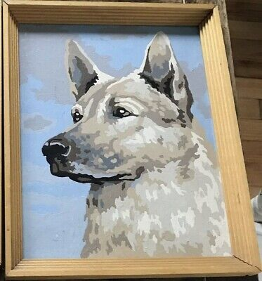 """VTG Completed Paint By Number PBN Blue Heeler(?) 8""""x10"""" Dog 50/60's NICELY DONE."""