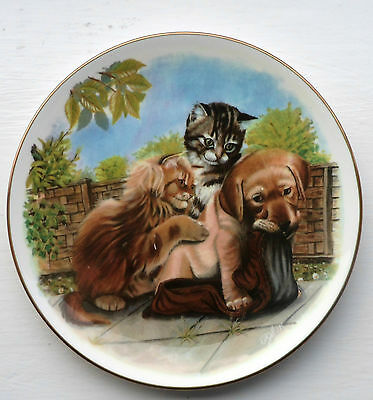 """Royal Albert """"Playful Friends"""" Bone China Dish – """"Find Your Own Shoe"""""""