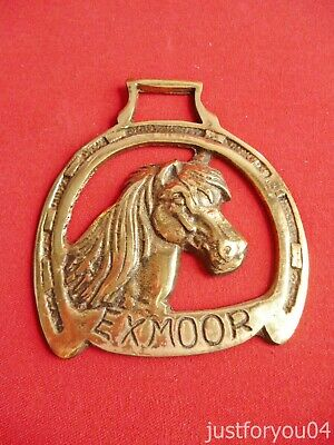 Vintage Solid Horse Brass - New Forest/Exmoor Pony Head  in a Lucky Horse shoe