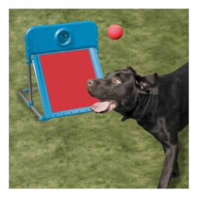 Rosewood Dog Agility Flyball -Training - Fly Ball  - Thrower - NQP
