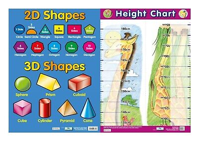 2D & 3D shapes + Height Chart - 2 Posters- Educational -  A2 size - Chart media