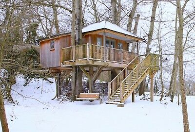Winter Treehouse Holiday for 2