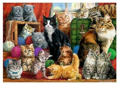 Puzzle 1000 pièces Cats Meeting (79203)