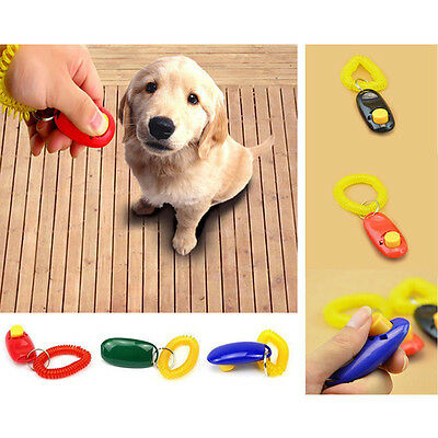 Button Trainer Obedience Aid Wrist Strap Dog Cat Pet Training Clicker Click Care