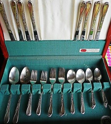 Wm Rogers & son IS Spring Flower Silverplate service for 8 50 pcs
